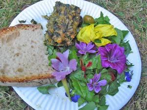 F te des simples rencontre nationale des producteurs de plantes m dicinales deux - Cuisine plantes sauvages ...